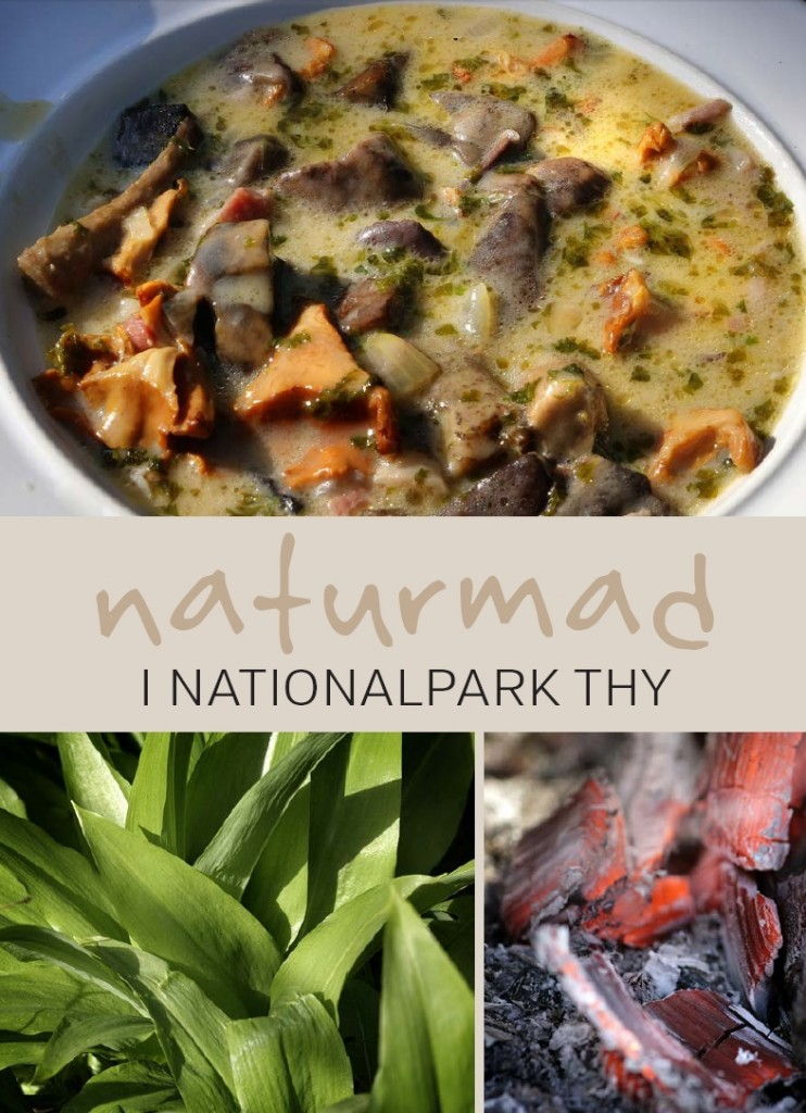Naturmad i Nationalpark Thy