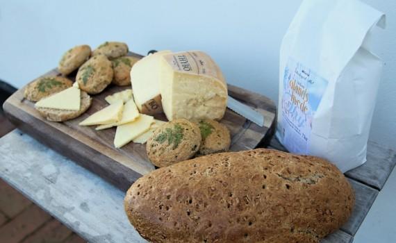 Brød bagt af mel fra Gyrup, med Thybo-ost fra Thise. Foto: Jørgen Peter Kjeldsen/ornit.dk.