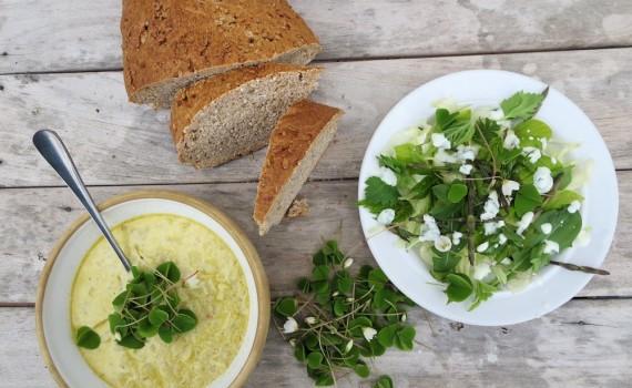Blomkålsuppe og salat med skovsyre. Foto: Mie Buus/Museum Thy.