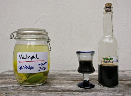 "Valnøddesnapsens farve - dag ét og efter tre år. Foto: Jørgen Peter Kjeldsen/<a href=""http://ornit.dk/"">ornit.dk</a>."